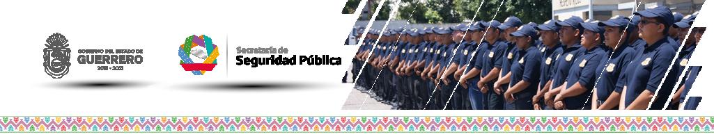 SECRETARIA DE SEGURIDAD PUBLICA DEL ESTADO DE GUERRERO